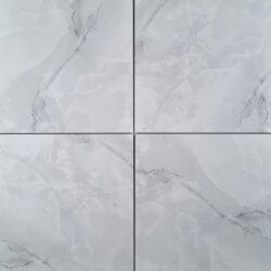 Monotone Grey Gloss Porcelain 60X60cm Indoor Hallway Entry Way Wall Floor Tile